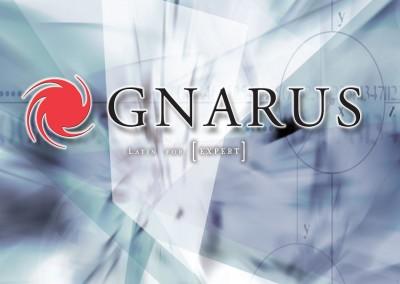 Kaptur Design - Gnarus Flyer