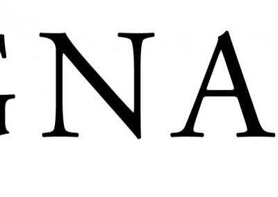 gnarus logo web